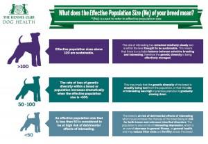 Dog Health Infographic 1125x775